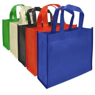 Eco Books Bag